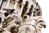 Group of pigeons on the statue — Stock Photo