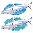 Drawing of a shark — Stock Vector