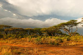 Landscape of Samburu before storm, Samburu, Kenya — Stock Photo