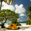 Stock Photo: Camp on paradise tropical beach, Maupiti, French Polynesia