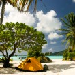 Camp on the paradise tropical beach, Maupiti, French Polynesia — Stock Photo #10143558
