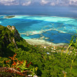 Scenic view of coral reef, Maupiti, French Polynesia — Stock Photo