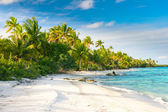 Beautiful Fakarava beach, French Polynesia — Stock Photo