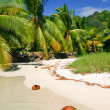 Stock Photo: Beach in paradise island Moorea, French Polynesia