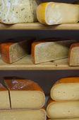 Tagliare il formaggio sugli scaffali nel negozio — Foto Stock