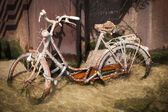 Drowned rusty bicyclegg — Stock Photo