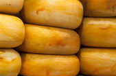 Nine Big Gouda cheese on a shelve — Stock Photo