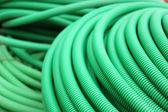 Groene slang — Stockfoto