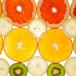 Background of kiwi, grapefruit, orange and lemon disks — Stock Photo