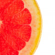 Macro shot of a half slice of grapefruit on white background — Stock Photo