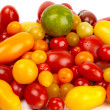 Colorful bunch of different varieties of organic tomatoes in a harvest — Stock Photo