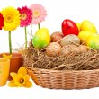 Daisies in the flower pot and Easter eggs in the basket — Stock Photo