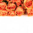 Wonderful Rose Bouquet — Stock Photo #9600201