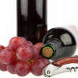 Two Wine bottle with corkscrew and grapes on a white background — Stock Photo