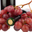 Stock Photo: Red grapes placed on wine bottle on white background