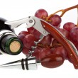 Wine set with red grapes and a wine bottle on white background — Stock Photo