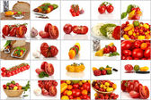Collage of many different varieties of organic tomatoes — Stock Photo