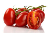 Fresh roma tomatoes cut in front of white background — Stock Photo