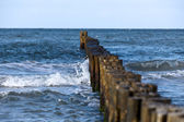Groynes in the surf on the German Baltic coast — Stock Photo