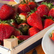 Strawberries in a box — Stock Photo