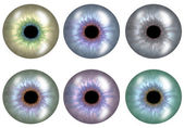 Color versions of pupil.The set. — Stock Photo