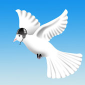 Flying dove in helmet — Stock Photo