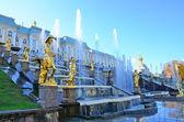 The Amazing Fountain — Stock Photo