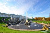 Fountain Pond — Stock Photo