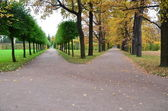 Path way in the park — Stock Photo