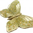 Stock Photo: Butterfly bronze sparomcandles