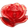 Stock Photo: Red rose flower sparomcandle