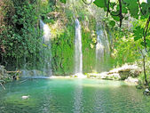 Waterfall and lagoon in deep forest — Stock Photo