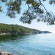 Stock Photo: Beach landscape phaselis turkey