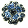 Jewellery brooch — Stockfoto #10537640