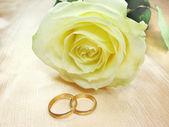 黄玫瑰和结婚戒指 — 图库照片