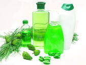 Shower gel bottles with fir extract — Stock Photo