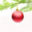 Red christmas ball on fir branch — Stock Photo #9626427