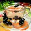 Fruit tewith black currant extract — Foto de stock #9674143