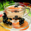 Fruit tewith black currant extract — Stockfoto #9674143