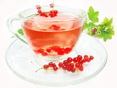 Fruit tea with red currant extract — ストック写真