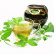 Stock Photo: Herbal tea with mint extract