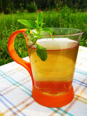 Herbal tea with fresh mint outdoors — Stock Photo