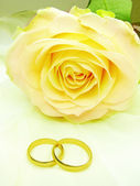 Yellow rose and wedding rings — Stock Photo