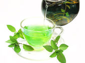 Green herbal tea with fresh mint — Stock Photo