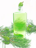 Shower shampoo bottle with fir extract — Stock Photo