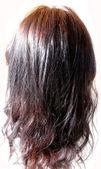 Testa di capelli neri lucidi — Foto Stock