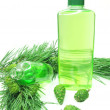 Shower gel bottle with fir extract - Stock Photo