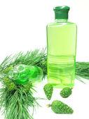 Sprchový gel láhev s extraktem jedle — Stock fotografie