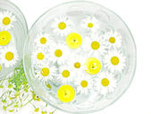 Spa candles daisy flowers — Stock Photo