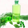 Shower gel bottle with fir extract — Stock Photo #9983382